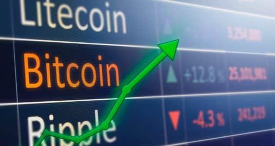 Traditional Finance Investors